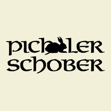 PichlerSchober_Logo_big.jpg